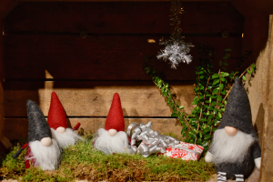Julkampanj på Klättercentret!